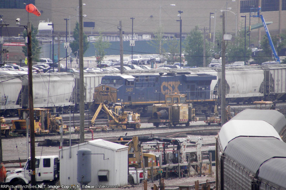 Unusual orphan in the center of Muskego yard