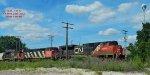 Sand train trio
