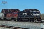 Beaver 9729 chases stallion 6952
