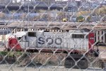 4436 held captive by a chain-link fence