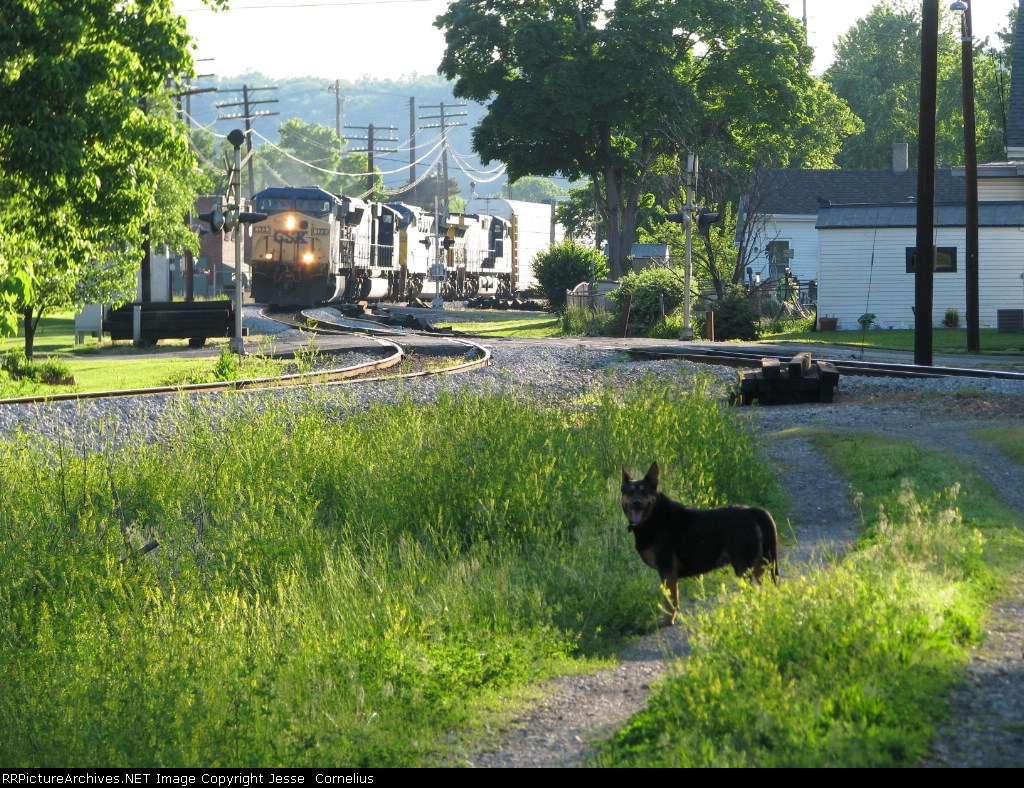 CSX 173 and my dog Pops