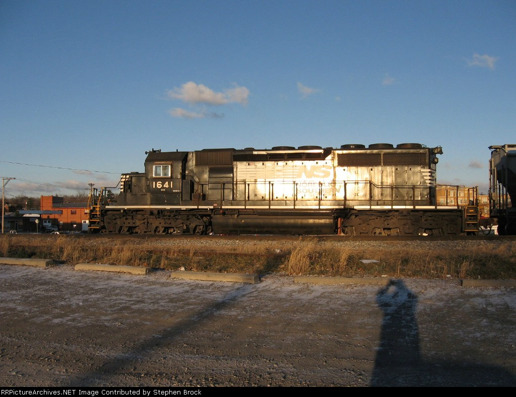 NS 1641 in the morning sun