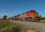 BNSF 775 (NS #175)