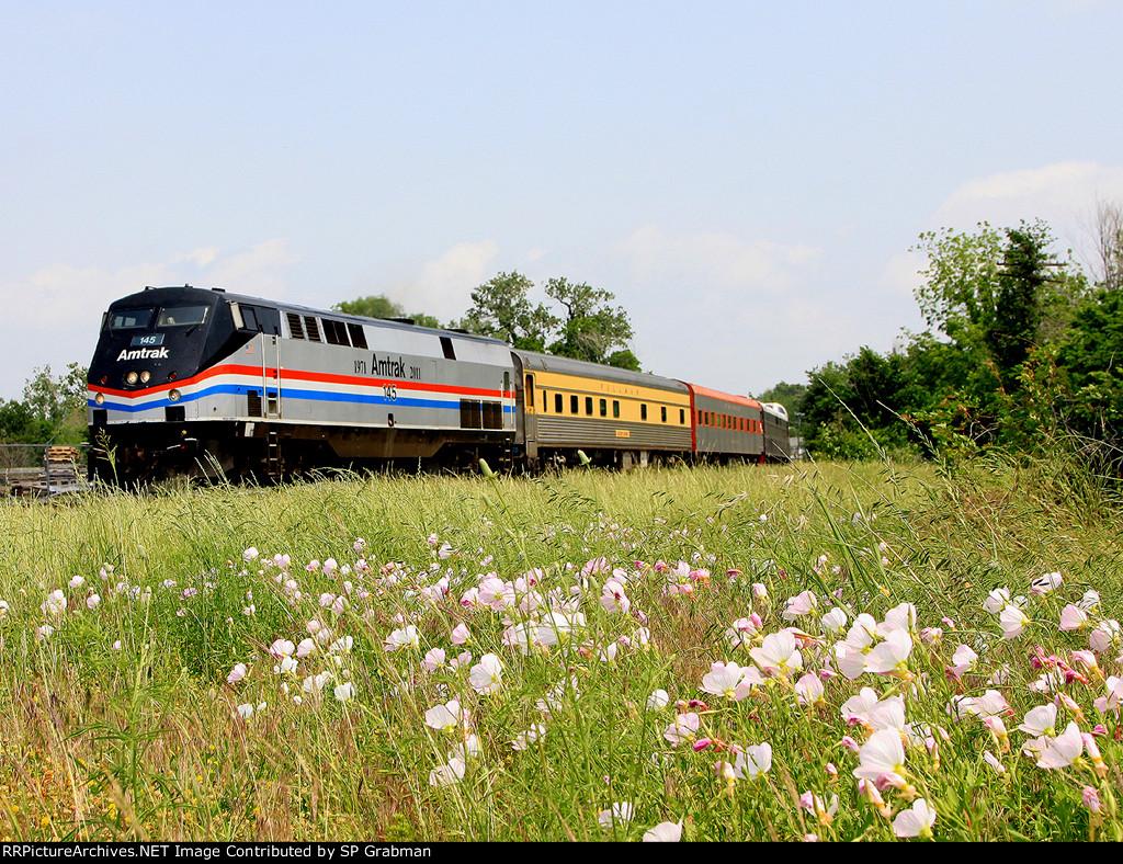 Amtrak Heritage running through the flowers