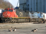 CN 2723 & IC 2465 (In need of a re-paint)