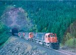 Cartier 41 78 77 with n/b empties, exits the tunnel at mp29.7,