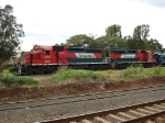 Ferromex SD40-2 3121 and GP38-2 2039