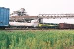 Meridian & Bigbee Railroad