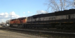 Eastbound BNSF coal train