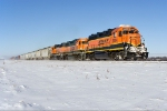 BNSF 2004 (Noyes Local)