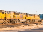 UP 8325 #3 in WB intermodal at 4:20pm
