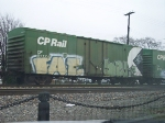 CP 81174