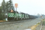BN 8144 North coal train