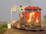 CN 5732W