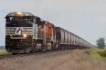NS 2689W