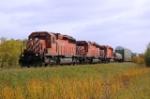 CP 5939N