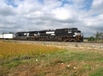 NS 9680 & 9924 with roadrailers from Texas