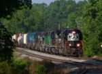 NS 3241 leads a nice consist