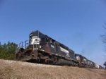 NS 3289 leads a trio of high hoods