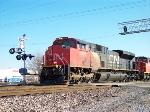 CN 8008