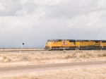 UP 4966 leads a WB autorack at 3:17pm