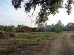 070713011 Railfanning at new Bruce Vento Nature Sanctuary