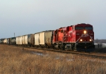 CP 8800 at Ravenna Trail