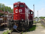 CP #1687 On The Side
