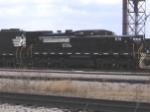 NS 976