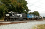 NS 5563 leads NS-P61