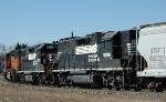 NS 5196 on NS-P61