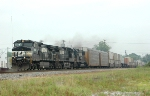 NS 9028 leads NS-204