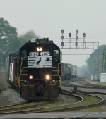 NS 5147 leads NS-P61