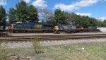 CSX / Pan Am Train POSE at Willows...