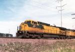 CNW 8687