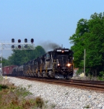 """No Horse"" NS 8620 at Carolina Rubber"
