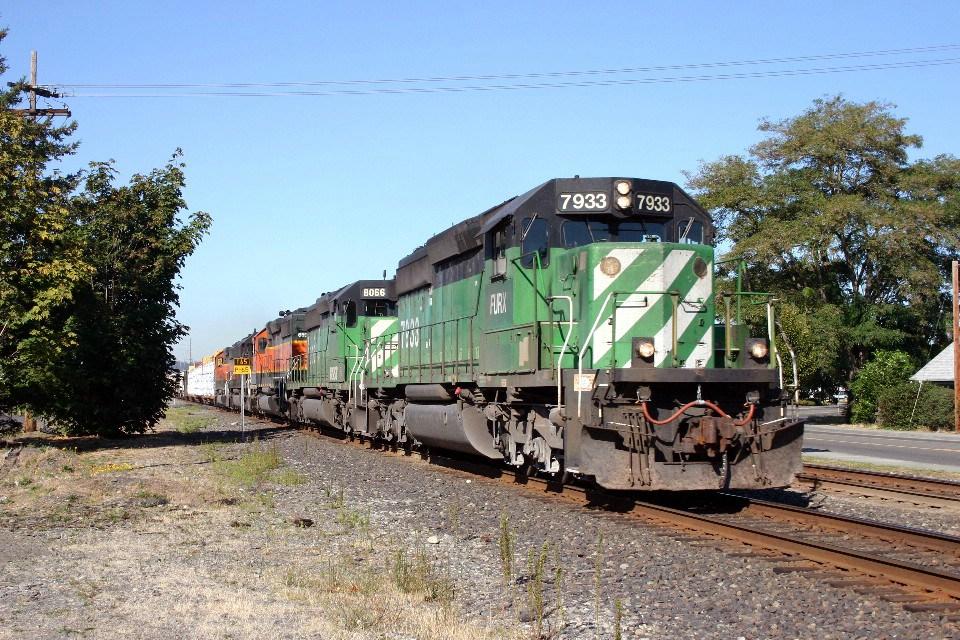 Manifest Train