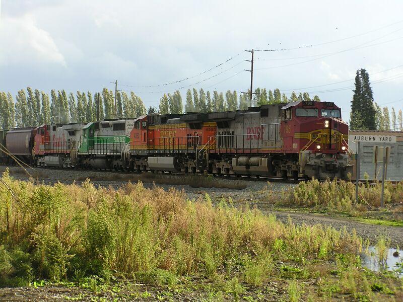 LD Grain Train