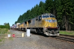 UP Intermodal Trains