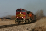 BNSF 702 leads taconite empties west