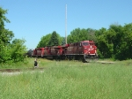 CP 8763 leads our second catch today