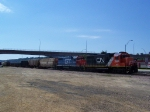 CN Freight Train Rests in the Yard