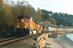 BNSF 4982 East @ Picnic Point