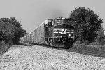 NS Train 196