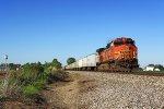 NS Train 253