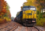 Canned CSX and Fall colors