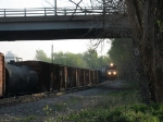 NS 9897 brings V92 into the yard with empty grain cars from Cargill & Pilgrim's Pride
