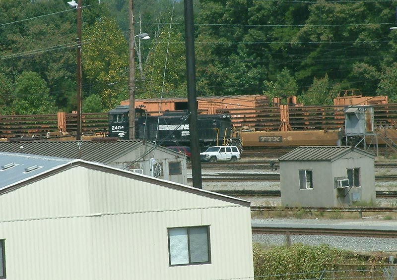 NS 2404 hiding in the yard