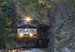 NS 166 peeps out of a rock cut