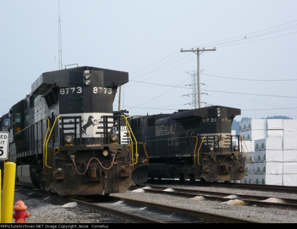 NS 8773